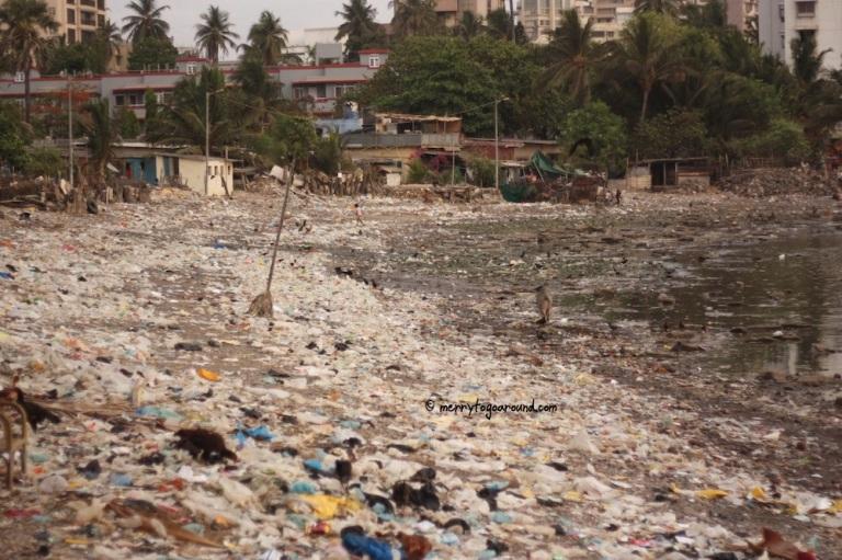 litter litter everywhere...