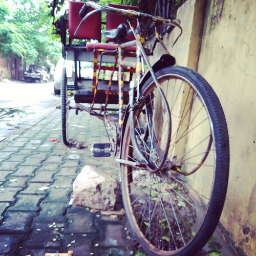 the ubiquitous cycle-rickshaw