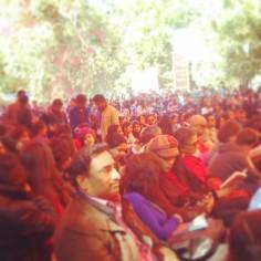 the crazy crowds