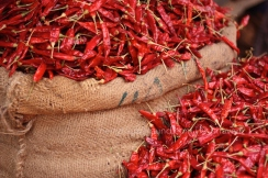 Sun-dried heat - the red chilly
