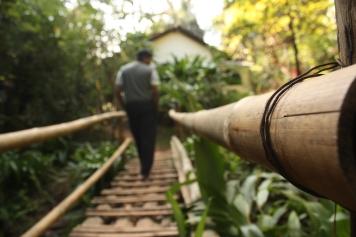 4. rainforest retreat