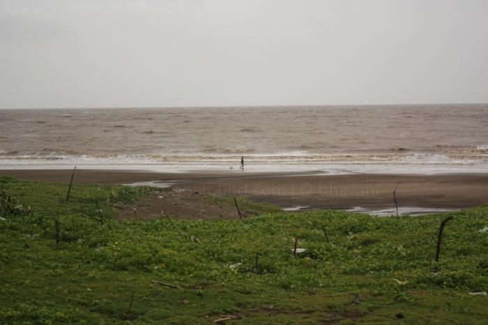 the road by the beach dahanu to bordi