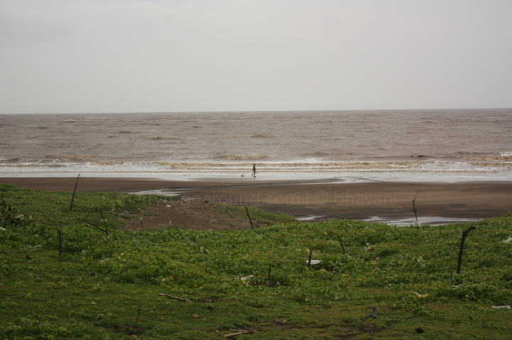 the road by the beach dahanu to bordi