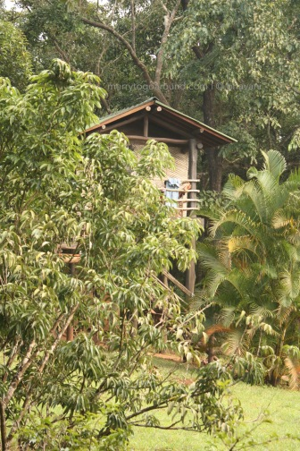 the treehouse - one of the three rooms for guests, and yes, the leopard tends to roam around just below.