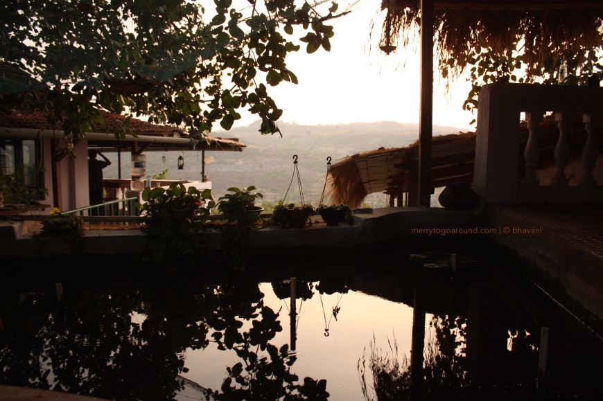 Sunsets over Banyan Bliss and the pond with darting guppies.